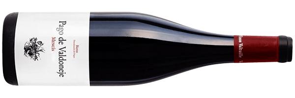 WineManual Vinos Valtuille, Pago de Valdoneje 2019 (Bierzo DO)